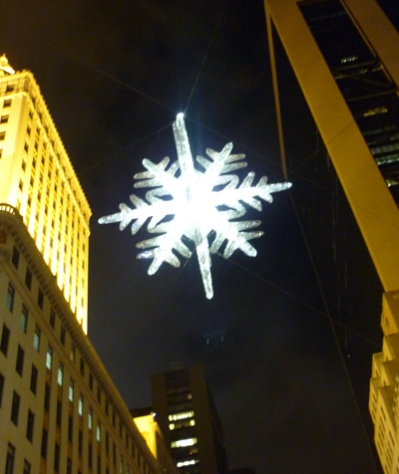 Unicef Snowflake
